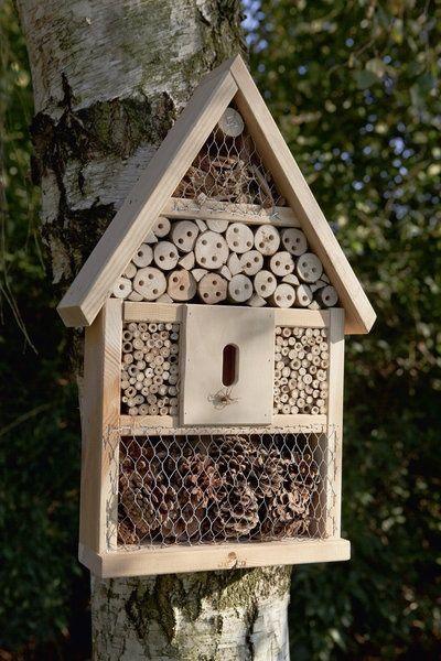habitat pour insectes