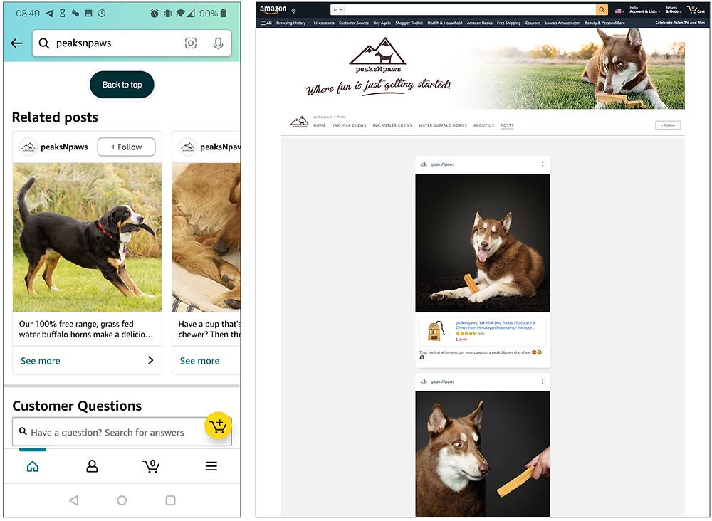 Screenshots of Amazon posts on mobile and desktop
