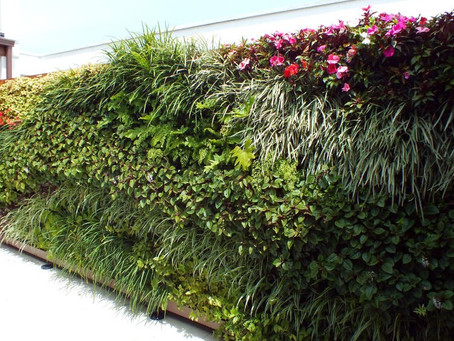Série #varandas03 - Tudo Sobre Jardim Vertical