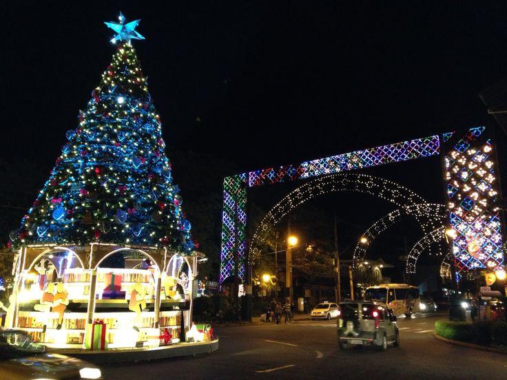 A iluminação azul também teve seu lugar de destaque na grande árvore que fica na rotatória das principais ruas da cidade.