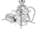 squirrel-304021_1280.png