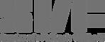 SVF Logo.png