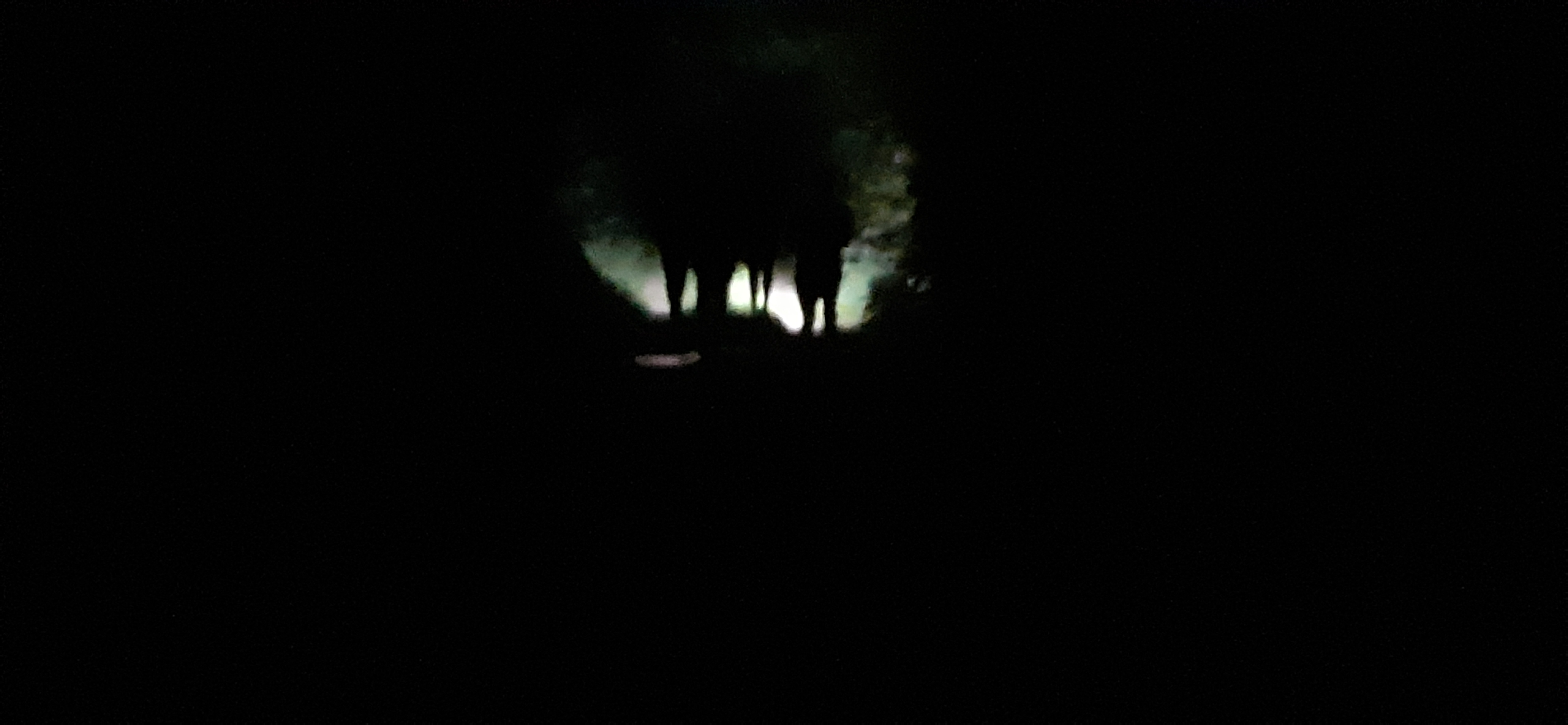 Night Walk in the dark