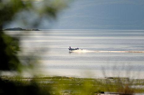 Île aux Grues-5.jpg