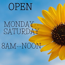 Open Mon--Saturday 8am-noon.png