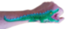 gator-for-card-IMG_6315-forpng.png