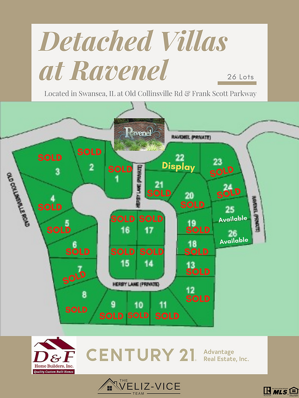 Ravenel Plat Flyer Phase 1  (1).png