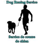 dog running service.jpg