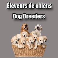 Eleveurs de chiens a Hawkesbury Ontario