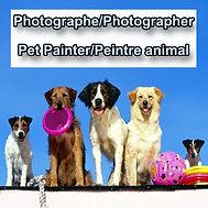 photographe animaux, peintre animal