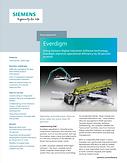 Everdigm Case Study.png