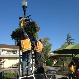 Lifting Basket at Plaza 2014.jpg