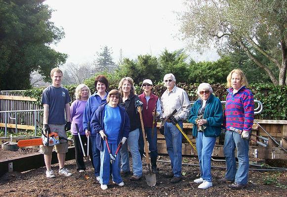 Street Tree Program - Volunteer