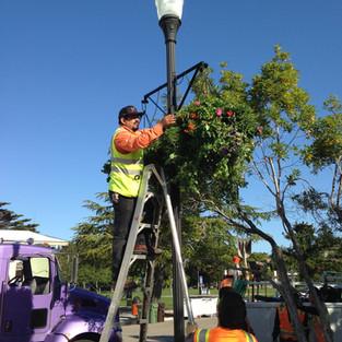 Public Works Hangs Baskets 2014.JPG