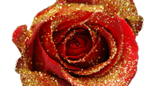 ROSE ROUGE OR