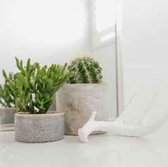 Home styling Point Cook