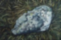 ROCK WITH LICHENS.jpg