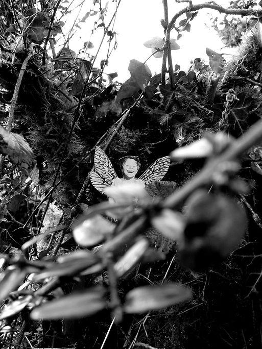 19 Hiding - the unseen hh.jpg