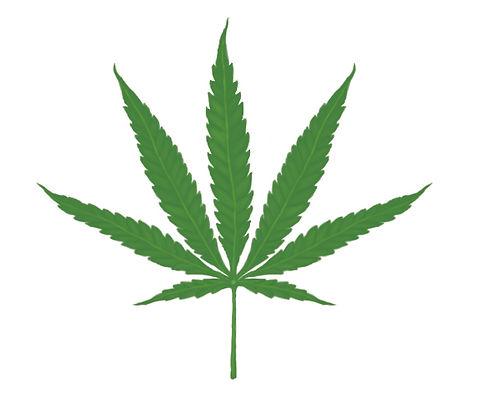 hemp-leaf.jpg