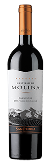 CASTILLO DE MOLINA RESERVA CARMENÈRE