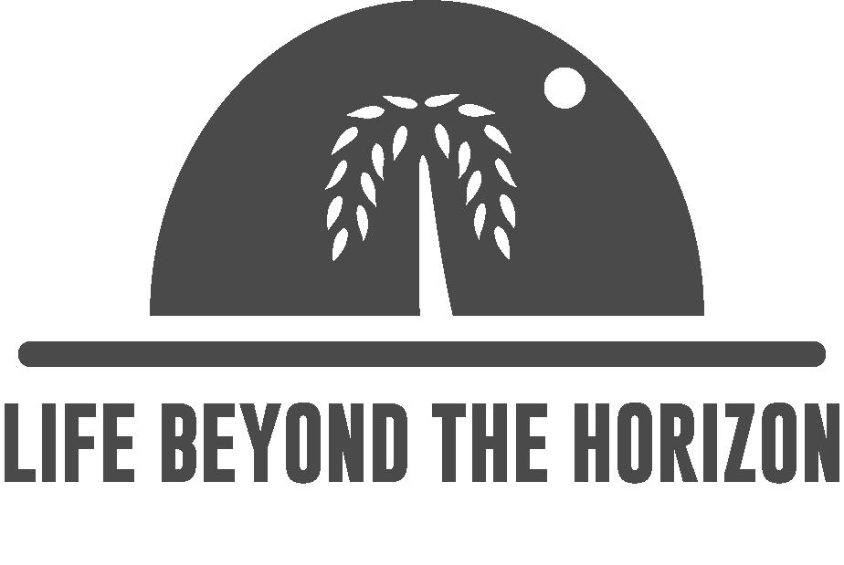 Life Beyond the Horizon