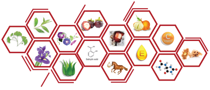 molecule-01.png