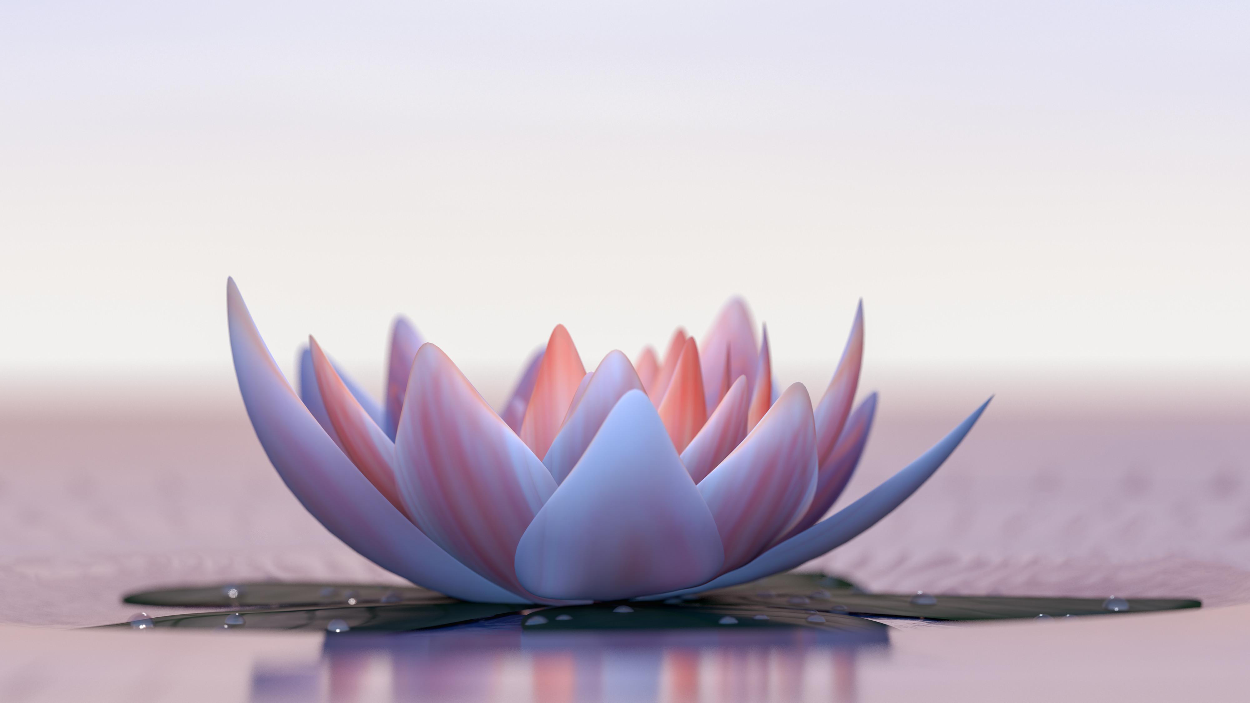 QiNourish | Yi Ren® Qigong Beginner I