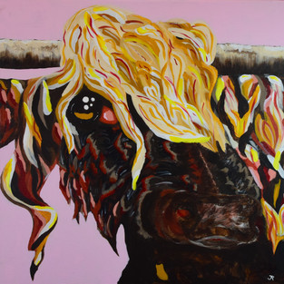 Highlander COVID Cow Large Series.jpg