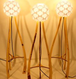 Sycamore lamp trio
