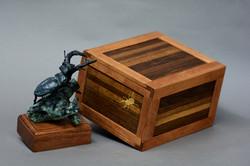 Beetle presentation box