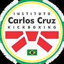 INSTITUTO CARLOS CRUZ.png