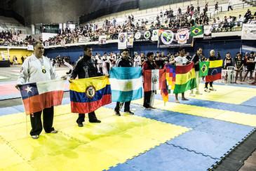 Panamericano_Uiama_150.jpg