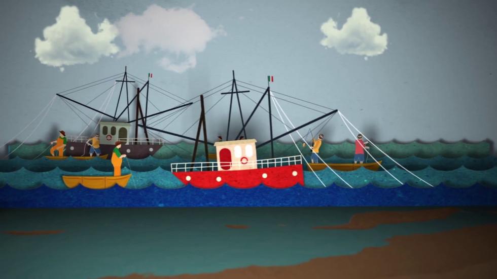 Zonas de Refugio pesquero en BCS: historia de creación.