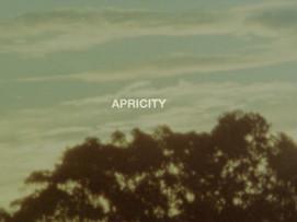 apricity [2020]