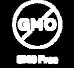 Ruvi GMO_Free-2_2x.png
