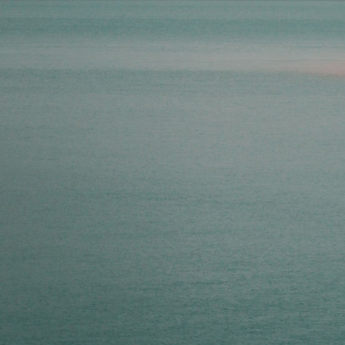 ws_shore,_trees,_sea_2560x1440_edited.jp