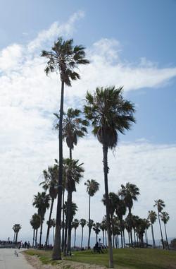 California Travel- LA