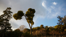 Spain in Spring
