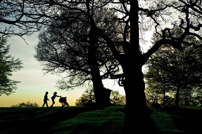 richmond-park-1181787_1920.jpg