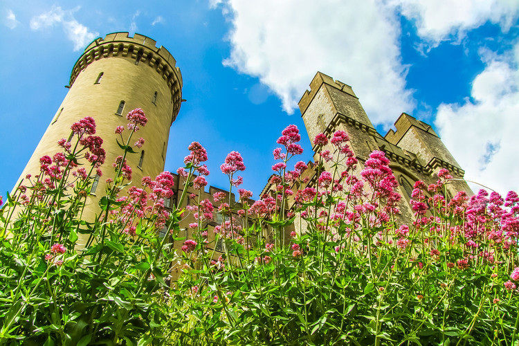 arundel-castle-857649_1920.jpg