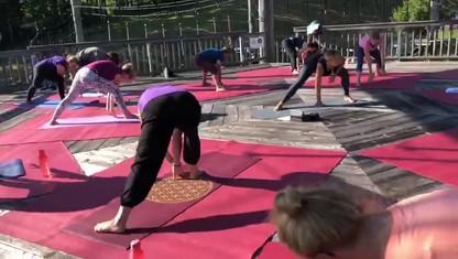 Yoga & Berg 2019