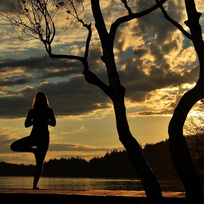 "Herbst Yoga Workshop ""Into the dark"""