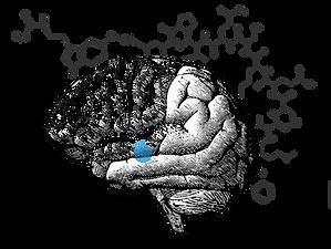 effets-cryotherapie-cerveau.png