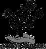 SPONDYL-ACTION_logo.png