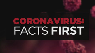 Understanding The Virus