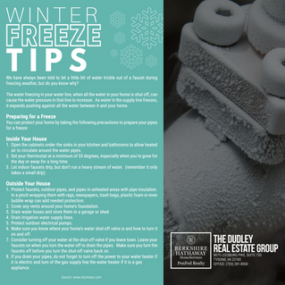 Winter Freeze Tips