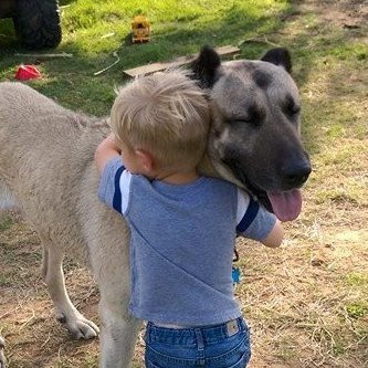 _And the boy loved his dog......and his