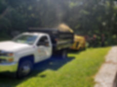 campground road pool tree trimming.jpg