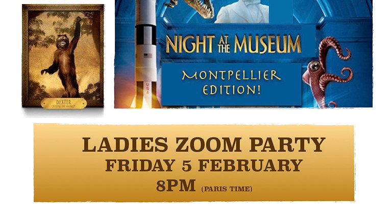 Night in the Museum Montpellier Edition