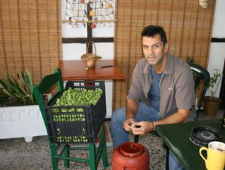 Halkidiki Olives